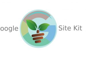 The 'Site Kit by Google' plugin, an all in one Google solution for WordPress