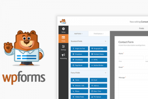 One of the best web-forms for WordPress is the WPForms plugin