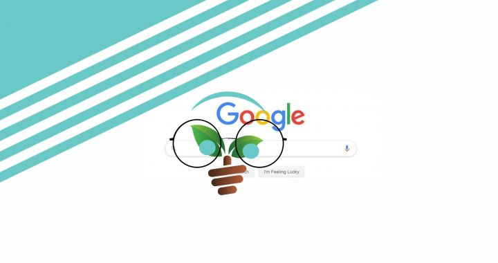What is search engine optimization ( SEO ) for WordPress?